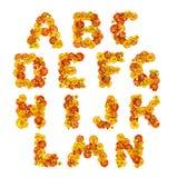 Flower alphabet Stock Photos