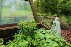 Flower Angel in cold frame Stock Photography
