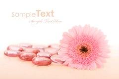 Flower ans spa stones Royalty Free Stock Photos