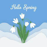 Flower applique horizontal banner paper flowers. Spring horizontal banner with colored paper flowers with space for your text. Flowers white snowdrops with Royalty Free Stock Photography