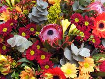 Flower Arangement/Bouquet - Proteas, Gum, Daisies etc. An arrangement of orange and red daisies, orange gerberas,gum leaves,protea etc Stock Photos