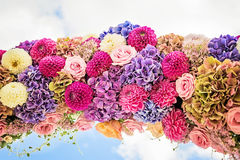 Flower arch with dahlias Stock Images