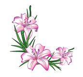 Flower Arrangement. Of lilies in the Stock Photo