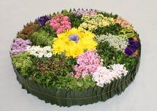 Flower Arrangement . Royalty Free Stock Photos