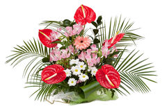 Flower arrangement. Alstroemeria Saturne, Red Anthurium, White Chrysanthemum, Gerbera. Bouquet isolated on white Royalty Free Stock Photo