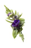 Flower arrangement. Flower corsage isolated on white made of purple flowers royalty free stock images
