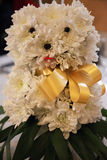 Flower arrangement, they are aranged as a teddy bear Royalty Free Stock Images