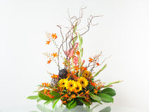 Flower arrangement Royalty Free Stock Images
