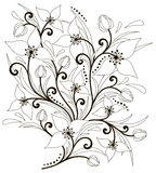Flower arrangement. Beautiful abstract black and white composition of flowers and leaves Royalty Free Stock Photography