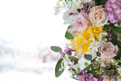 Flower arrangement. Beautiful colored flower arrangement with light background Royalty Free Stock Images