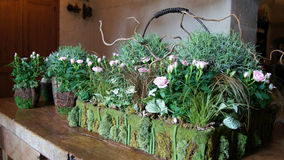 Flower arrangement at Chateau Chenonceau in Loire Valley Royalty Free Stock Images