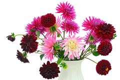 Flower arrangement of chrysanthemums and dahlias Royalty Free Stock Image