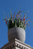 Flower arrangement in the colours of the Norwegian flag, at The Norwegian Parliament, on Norway`s  National Day, 17th of May Royalty Free Stock Photography