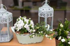 Flower arrangement in a floral shop Stock Photos