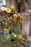 Flower arrangement. Fresh flower arrangement, warm shades Stock Images