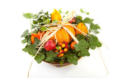 Flower arrangement for halloween Stock Images