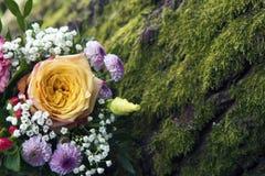 Flower arrangement next to green moss Stock Photography
