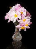Flower arrangement of Peonies Royalty Free Stock Image