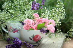 Flower arrangement in a porcelain cup with roses and lavender Royalty Free Stock Photo