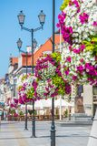 Flower arrangement on street lamp Stock Images