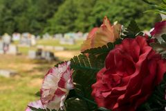 Subdued red flower arrangement bouquet at cemetery. Flower arrangement on tombstone in cemetery with other grave markers in background. Grassy field and trees in Stock Photography