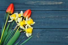 Flower arrangement of tulips and daffodils. Spring flowers. March 8th, mother`s day, valentine`s day, International Women`s Day, congratulate Stock Image