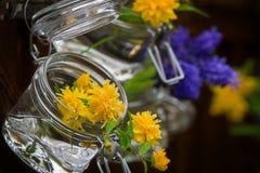 Flower Arrangements Royalty Free Stock Image