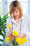 Flower Arranging Stock Photos