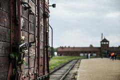Flower attached to Historic Train on rails concentration camp Auschwitz Birkenau KZ Poland Stock Images