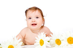 Flower  baby Stock Image