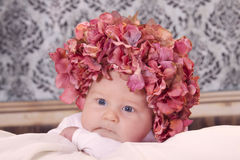 Flower baby Stock Photo