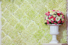 Flower backdrop. Backdrop of white flower and colorful flower in white flowerpot Stock Photography