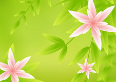 Flower backgorund. Abstract illustration of flower background Royalty Free Stock Photography