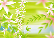 Flower backgorund. Abstract illustration of flower background Royalty Free Stock Images