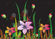 Flowers illustrated on black. Colorful flowers illustrated on black with green blades of grass Royalty Free Stock Photo