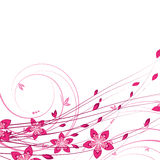 Flower background. An illustration for your design project royalty free illustration