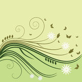 Flower Background. Vector  illustration with flowers, buds, leafs and butterflies in hell green and olive tones Stock Photography