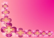 Flower Background. Illustration with flower on pink background Stock Photos