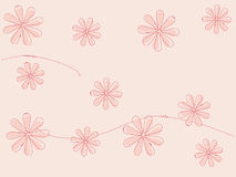 Flower background. In soft pink color with contour Royalty Free Stock Image