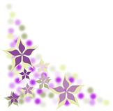 Flower background. Background with the image of florets Royalty Free Stock Photos
