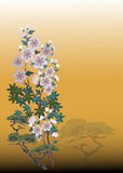 Flower background. In Japanese style Royalty Free Stock Images