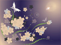 Flower background. Playnig with light Royalty Free Stock Images