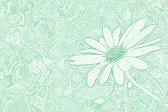 Flower Background. Image edited from actual photo Royalty Free Stock Images