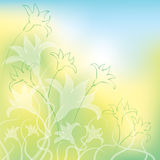Flower Background. An illustration of a flower background Royalty Free Stock Images