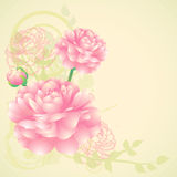 Flower background. Vector background with pink flowers Stock Photography