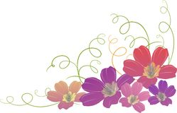 flower background Stock Image