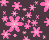 Flower background Stock Photography