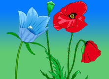 Flower Background. Colorful Flower Background stock illustration
