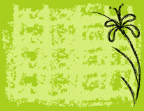 Flower Background. Plaid and flower background illustration Stock Image
