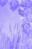Flower background. Grass and flower background for illustration purpose Stock Images